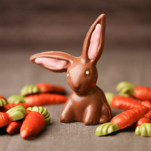 Chocolate Floppy Easter Bunny