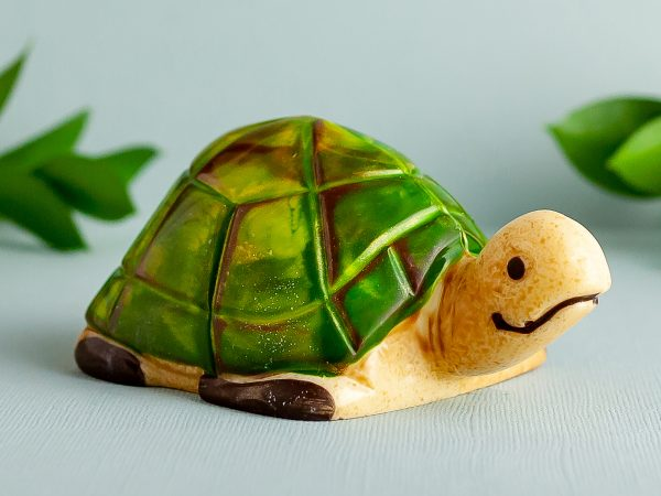 Chocolate Mama Turtle