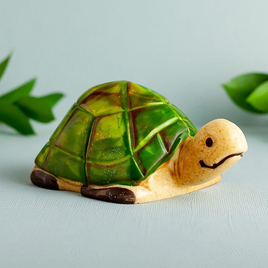 Chocolate Mama Turtle